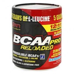 SAN BCAA Pro Reloaded 456 г ежевика