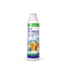 Напиток с коллагеном MyChoice Nutrition My Fitness Wellness 500 мл черника-мед