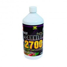Russport L-Carnitine Liquid 2700, 10000 мл, зеленый чай