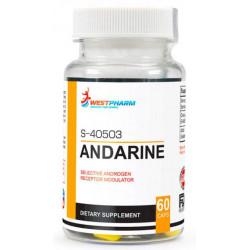 WestPharm Andarine - S-40503 60 капсул