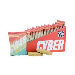 Bite Печенье протеиновое Cyber 42 г, 20 шт, вкус: корица-орех