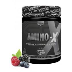 Аминокислотный комплекс AMINO-X, вкус «Лесные ягоды», 250 гр, STEELPOWER