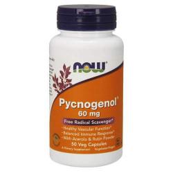 NOW Pycnogenol 60 мг - 50 капсул - пикногенол, экстракт французской морской сосны