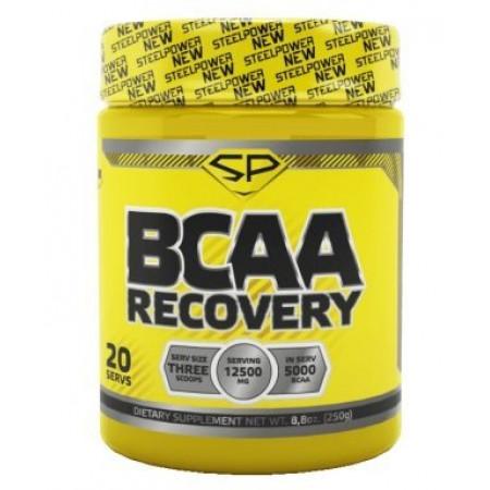 Аминокислоты БЦА в порошке STEEL POWER BCAA Recovery 250 гр - Фьюри