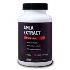 Экстракт амлы Protein.Company Amla extract 90 капсул